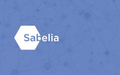 Lanzamos Sabelia: panel online para investigaciones de mercado